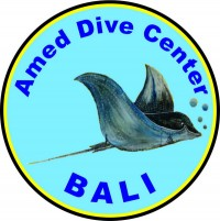 Amed Dive Center logo